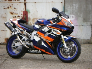 R6 Taz